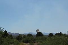 Triple 2 Fire 001 (Az Skies Photography) Tags: santa county wild arizona forest canon fire eos rebel la may az sierra cruz national 16 forestfire coronado wildfire coronadonationalforest santacruzcounty 2016 lasierra 51616 t2i santacruzcountyaz lasierrafire canoneosrebelt2i eosrebelt2i 5162016 may162016