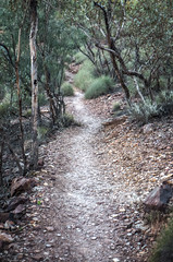 MacDonnell Ranges Redbank Gorge path Northern Territory