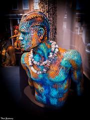Multihued man (Thad Zajdowicz) Tags: art man color vignette window shop gallery santafe newmexico zajdowicz lightroom travel leica indoor