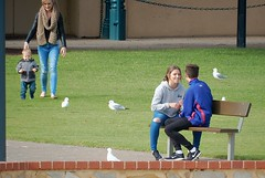 One Leads to the Other (mikecogh) Tags: glenelg couple bench seagulls mother child toddler affection