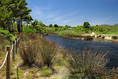 Barranc de Sant Jordi (Jorge Franganillo) Tags: costadaurada costadorada tarragona catalunya catalua espaa spain costa shore seaside humedal aiguamoll laguna llacuna wetland pond lagoon lake lametllademar