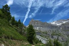 Les Muverans (bulbocode909) Tags: valais suisse ovronnaz muverans montagnes nature arbres nuages paysages vert bleu neige