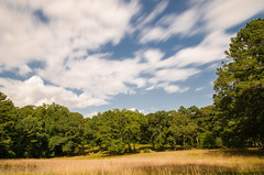 Testing, Testing (DancingTerrapin) Tags: sky landscape green summer clouds movement motion nd filter georgia ga cobbcounty july 2016 wednesday nikon bw filters landscapes park recreation longexposure