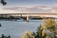 _7502075.jpg (larssteenberg) Tags: fglar sdermalm stockholm stockholmsln sverige se sweden vsterbron bridge sailboat sailing mlaren arch archedbridge kungsholmen