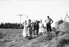 IMG_20160721_0034 (Westmans i Ovik) Tags: pappa bengt bilder