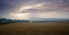 Bury Morning (Richard Paterson) Tags: bury hill fields clouds skycape west sussex south downs national park morning amberley mount