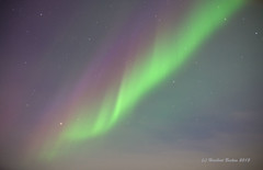Nordlicht - Aurora borealis DSC02721 (HerryB) Tags: copyright island iceland europa europe flickr photos skandinavien fotos scandinavia reise rundreise 2015 polarlicht panoramio bechen aurora borealis heribert bechen