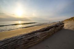 Hoffmaster Sun Dog (The Charliecam) Tags: beach sand michigan halo lakemichigan greatlakes sundog hoffmasterstatepark canon6d rokinon14mm