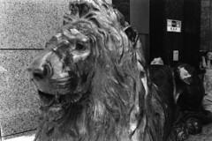 Ginza, Tokyo, 2015. (Giovanni Pascarella) Tags: leica japan darkroom print tokyo ginza blackwhite shinjuku asia minolta 28mm asph cle elmarit