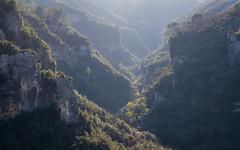 Saint Cézaire - Vallée de la Siagne (jeff_006) Tags: light cliff tree nature rock landscape olympus valley pro f28 40150 em5