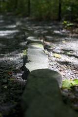 Path (Marcus Williams) Tags: light stone canon rocks path rays t3 1100d