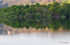 Embalse de Eiras. (Ferruxe65) Tags: naturaleza nature water forest reflections agua dam ngc galicia bosque rivers rios pontevedra reflejos embalse canoneos7d fornelosdemontes riooitaven embalsedeeiras tamron150600