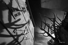 L'ombre de lui mme (Jacques Isner) Tags: pentax tamron menton urbain 10mm pentaxart pentaxk5 pentaxflickraward