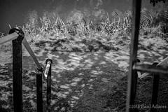 IMG_9848 (mrpauladams) Tags: summer blackandwhite color colour building mannequin window monochrome dark mono canal sinister watching steps aylesbury overlooking overseeing insidious poppyflower