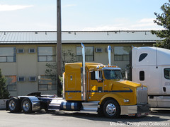Farwest Steel Kenworth T-800, Truck #114 (Michael Cereghino (Avsfan118)) Tags: show tractor truck t model steel transportation 800 trucking bobtail sleeper kw kenworth farwest t800