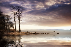 Mattapoisett kind of living (shane.taremi) Tags: ocean longexposure trees sunset sea sky storm beach water clouds landscape seaside outdoor shore serene mattapoisett flickrdiamond greaterphotographers