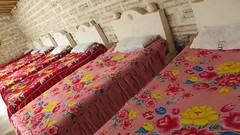 - 2016-05-06 at 18-21-24 + 7 dwarfs sleep here