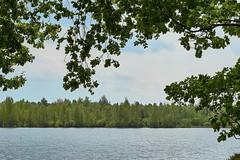 Canadameer , Drents-Friese Wold (Dirk van der Horn) Tags: drenthe friesland water meer lake drentsfriesewold canadameer