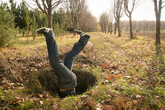 into a hole (www.Michie.ru) Tags: trees tree male fall field hole upsidedown ground sneakers jeans wonderland chisinau moldova freefall