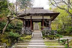 Jojakko-ji I (Douguerreotype) Tags: tree japan stairs garden temple moss kyoto gate shrine buddhist steps