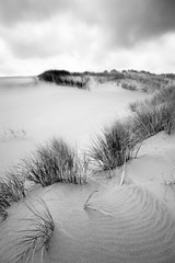 Dunes #12