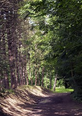 Parc De Biez - Mondeville (CyndiieDel) Tags: france nature normandie paysage extrieur arbre parc calvados mondeville bassenormandie parcdebiez