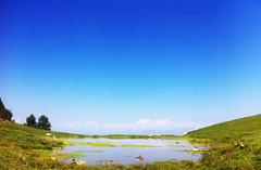 IMG_2127 (Jashir Siddiqui) Tags: pir panj sanctuary bird muree gali dunga park national ayubia nathiagali moshpuri mukeshpuri