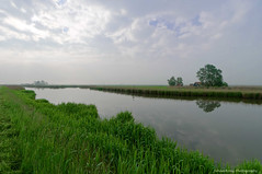 Awakening polder landscape (Explore 2016-06-22) (Johan Konz) Tags: ringvaart polder schermer netherlands awaking morning watercourse sky clouds sunny outdoor landscape house trees watermill green spring reed grass water nikon d90 serene peaceful
