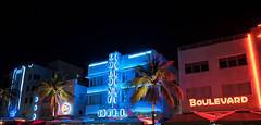 _JAM6665 (Jamil D750) Tags: miami night nighttime palm trees beach south ocean drive nikon colony hotel boulevard