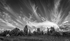 Dramatic cloud  (T.ye) Tags: landscape cloud clouds outside outdoor blackandwhite sky field house alone deepofthefield todd ye mono grass trees tree plant