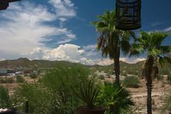 Esas nubes ya pasaron (Brujo+) Tags: jaula nubes palmas