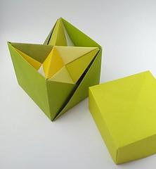Stella Octangula in a box (modular.dodecahedron) Tags: modularorigami tomokofuse origamibox stellaoctangula edgemodule