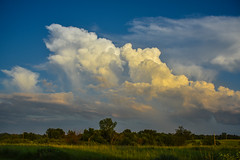 Wannabe Thunderstorm (thefisch1) Tags: sky cloud storm tree nikon nimbus horizon line hills pasture kansas nikkor puffy flint thunder developing cumulo d810