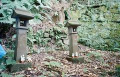 -2 (UME2nd) Tags: fujifilm japan natura classica