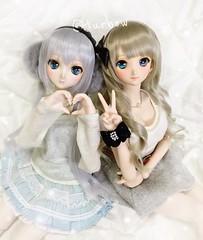 My cuties~ (TURBOW) Tags: doll volks dollfiedream dollfiedreamsister dd dds alicekuonji saberlily wdsfaceup typemoon