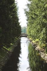 706 () Tags: saintpetersburg nature      architecture