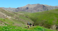 Climbing and Camping (Doug Goodenough) Tags: china road camping sun green bike bicycle creek river scott spring jen ride packing spokes salmon sadie 15 idaho april powerline pedals canyons waha 205 bikepacking drg53115 drg53115p waphilla drg53115ppowerline