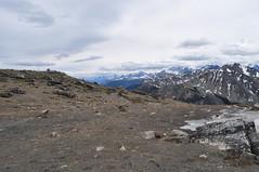 CANADA - PARQUE NACIONAL DE JASPER - MONTE WHISTLER (28) (Armando Caldern) Tags: whistler patrimoniocultural montaasrocosas parquenacionaldejasper parquenacionaldecanada