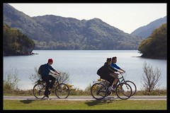 bicycling (final gather) Tags: park county ireland irish lake tourism bicycling cycling scenery tour scenic scene tourist kerry muckross tourists national killarney co activity touring active killarneynationalpark countykerry cokerry neilt