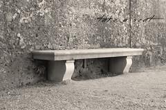 take a seat (peter pirker) Tags: bw salzburg stone austria österreich seat bank mirabell schwarzweis setin peterfoto canoneos550d peterpirker
