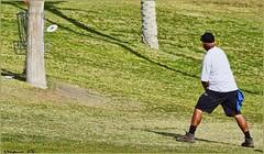 937 (AJVaughn.com) Tags: fountain alan del golf james j championship memorial fiesta tour camino outdoor lakes hills national vista scottsdale disc vaughn foutain 2016 ajvaughn ajvaughncom alanjv
