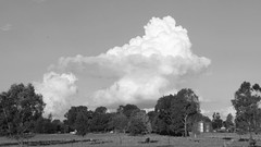 basic cumulonimbus formation - Forest Hill NSW - April 2016 (low color quality) (BW) (nicephotog) Tags: sky cloud weather atmosphere australia formation nsw meteorology cumulonimbus