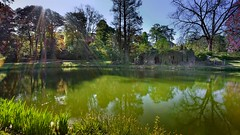 Reflets (Yasmine Hens) Tags: green water nikon eau europa flickr belgium ngc reflexion reflets namur hens yasmine wallonie rflection iamflickr flickrunitedaward nikond5500 hensyasmine