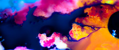 unicorn spit 7 (patrix) Tags: macro saturated magnet foodcolor ferrofluid