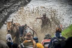 44_20160315-171436-_DSC5569 (trueforever) Tags: indonesia ibis bukittinggi padang novotel pagaruyung minangkabau jamgadang lembahharau westsumatera batusangkar tanahdatar ngaraisianok padangpanjang pacujawi padangpariaman