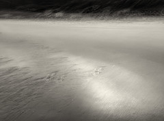 shelley beach i (Kenneth Rowe) Tags: longexposure blackandwhite bw beach monochrome dunes multipleexposures shelleybeach blackandwhitelandscape iphone6
