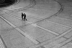 Synchronize (Hiro.Matsumoto) Tags: street blackandwhite monochrome rain tokyo sony