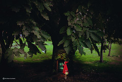 Little Red Riding Hood (Marco San Martin) Tags: lighting door naturaleza tree art composition photoshop design puerta arte littleredridinghood redridinghood caperucitaroja marcosanmartin