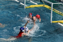 AW3Z0302_R.Varadi_R.Varadi (Robi33) Tags: summer sports water swimming ball fight women action basel swimmingpool watersports waterpolo sportspool waterpolochampionship