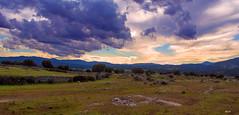 Dehesas de pie de sierra de Madrid (Manuel A. M.) Tags: olympusep5 olympusm1442mmf3556iir sierrademadrid dehesa